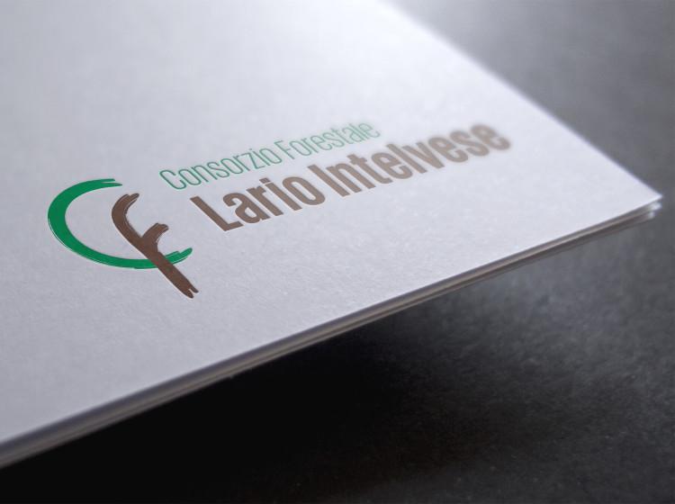 creazione grafica logo consorzio forestale lariointelvese
